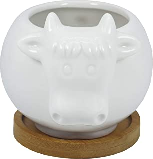 Best white cow planter Reviews