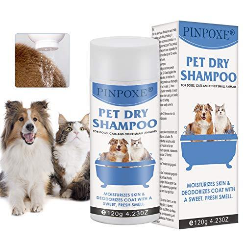 Hundeshampoo, Trocken-Schaum-Shampoo für Hunde und Katzen, Welpen Shampoo, Katzen Shampoo, natürliche Pflege für Fell & Haut, Hautfreundlich, Pflegend und leicht kämmbar, Angenehm im Geruch, 100g