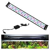 Hengda LED Luz para Acuario, 90-115 cm Iluminación de Acuario de Espectro Completo a Prueba de Agua para Plantas de Acuario, Brillo Regulable con Controlador Externo,31 W