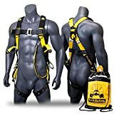 KwikSafety (Charlotte, NC) SUPERCELL Safety Harness   ANSI OSHA Full Body Personal Fall Protection   Dorsal Ring Side D-Rings Grommet Tongue Buckle Straps Tool Lanyard Construction Tower Roofing