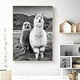 Alpaca Canvas Art Poster Animal Wall Art Decoration Blanco y Negro Camel Kids Room Decoration,Pintura sin Marco,50X75cm
