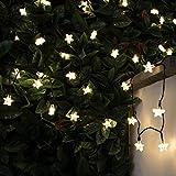 solarbetriebene Outdoor Stern Lichterkette, 10m, 100 LEDs warmweiß, mit Timer, 8 Funktionen, von Festive Lights