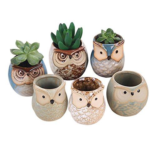 Cutogain Lot de 6 pots en céramique en forme de hibou pour plantes succulentes, cactus, bonsaï