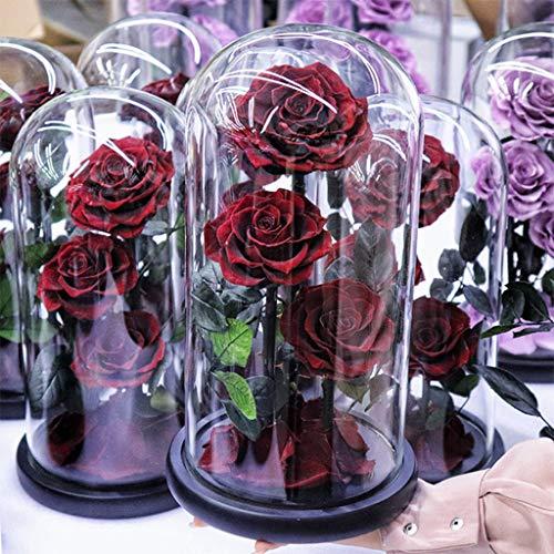WZ Rosa Eterna 3 Cabezas En Cúpula Cristal Flor Real Preservada Regalo Navidad Día San Valentín Día Madre Aniversario Bodas Decoración Mesa (Color : Red Wine)