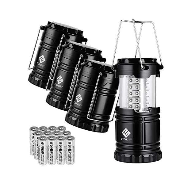 Etekcity Lantern Camping Lantern Battery Powered Lights for Power Outages, Home Emergency, Camping, Hiking, Hurricane, A…