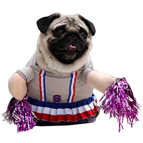 Alfie Petoga Couture Pet Haiden Cheerleader-Kostüm