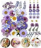 Longwu Fiori pressati secchi assortiti margherite colorate foglie ortensie per candele fai da te in resina gioielli chiodo ciondolo artigianato creazione arte floreale decorazioni viola