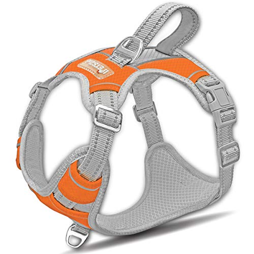 IPETSZOO Dog Harness for Large Dogs No Pull,Easy Walk Harness,3M Reflective No-Choke Dog Vest,Adjustable Soft Padded Pet Vest with Control Handle for Medium Large Dogs(Orange,S)