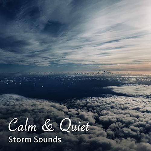 Zen Music Garden, Yoga Rain, White Noise Meditation