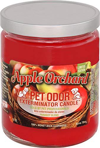 Pet Odor Exterminator Candle 12 oz jar, Apple Orchard Limited Edition!!