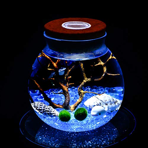 Chennie Corcho Micro Paisaje Botella Ecológica Tanque de Peces Jarra de Cristal Redonda Bola de Acuario Luces Nocturnas Regalo (Color : with Light)