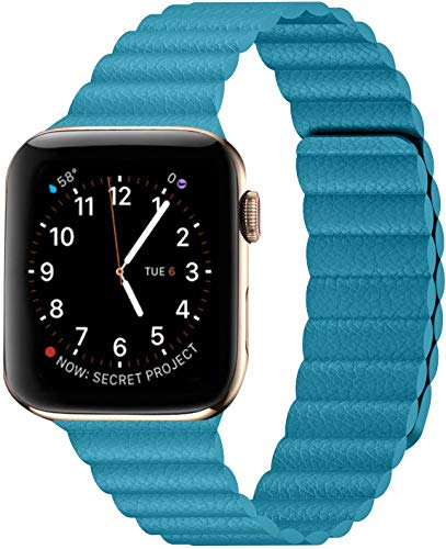 Danwon Compatible with Apple Watch Leather Link Band 40mm/38mm,44mm/42mm Series 6, Strong Magnetic Adjustable Leather Strap with Flexible Molded Magnets for iWatch Series SE 5/4/3/2/1 (42mm/44mm, Skyblue)