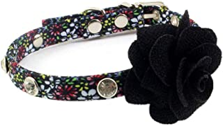 bling puppy accessories