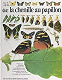 De la chenille au papillon (French Edition)