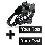Canicaprice Harnais Julius K9 Power IDC Noir + 2 étiquettes à Personnaliser (Mini-Mini (Poitrail : 40-53cm))