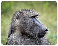 7.1 X 8.7インチマウスパッド、ワイルドバブーンマウスマットパッド-モンキー霊長類動物ジャングルコンピューターギフト