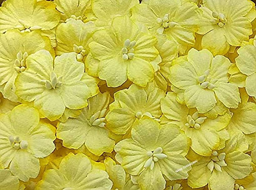 NAVA CHIANGMAI Sakura Cherry Blossom Mulberry Paper Flower (No Wire stem) Craft Flowers, Artificial Flowers, Scrapbooking Paper Flowers,Decorative Flowers for Crafts. (Yellow)