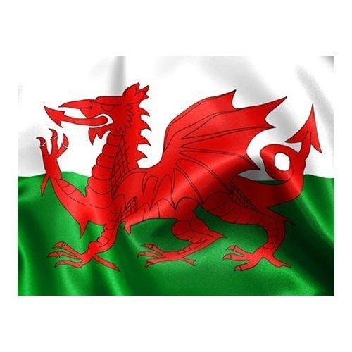 Uteruik Wales Welsh Vlag Met Oogjes Rode Draak, 5ft x 3ft/1.5m x 0.9m
