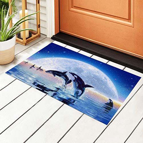 Pod Of Orcas Entrance PVC Doormat with Non-Slip Waterproof Backing, Floor Mats for Outdoor Door Kitchen Bathroom Indoor 40 X 60cm