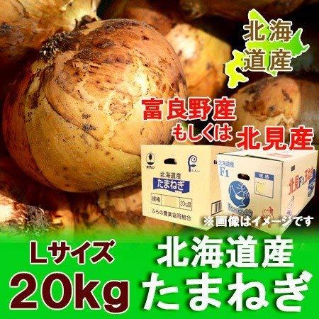 北海道産 たまねぎ 20kg Lサイズ 北海道産 玉ねぎ 農協 共選 正規品 タマネギ 玉葱 送料 無料