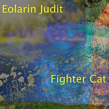 Fighter Cat