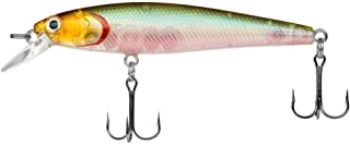 Dynamic Lures Trout Fishing Lure | Multiple BB Chamber Inside | (2) – Size 10..