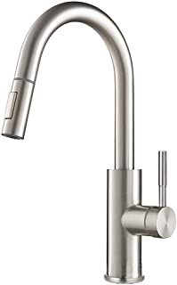Stainless Steel Single Handle Kitchen Sink Faucet with Sprayer, Lead Resisting Pull Down Kitchen Faucet with Deck Plate