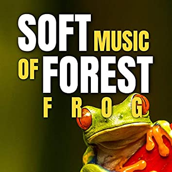 Soft Music of Forest Frog