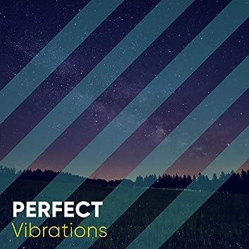 Perfect Vibrations, Vol. 2