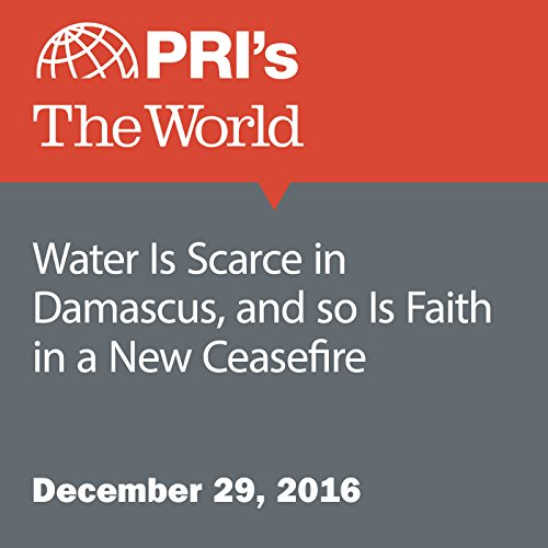 Water Is Scarce in Damascus, and So Is Faith in a New Ceasefire audiobook cover art