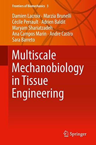 Multiscale Mechanobiology in Tissue Engineering (Frontiers of Biomechanics Book 3) (English Edition)