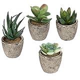 Artificial Plantas Varios Decorativo Suculentas Macetas con Gris Juego de 4