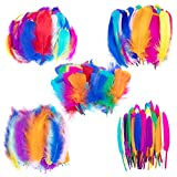 Whaline Colorful Feather 300Pcs 5 Styles Craft Feather 10 Colors Goose Feather Turkey Plumage Mixed Set for Dream Catcher Hat Jewelry Cloths Bag Earring Accessories Wedding Home Decorations