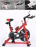 SHDS Bicicleta de Interior |Bicicleta de Ejercicio Profesional para Interiores |Equipo de Ejercicios, con Botella Deportiva y Dispositivo de Ajuste de Resistencia, Rojo