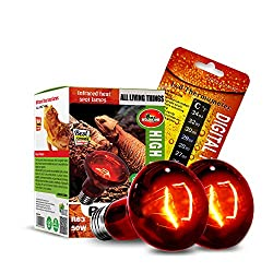 CULLEN 2PCS Reptile Heat Lamp 50W Infrared Basking Spot Heat Lamp,Reptile Light Bulb for Reptiles & Bearded DragonWith Stick-on Digital Temperature Thermometer