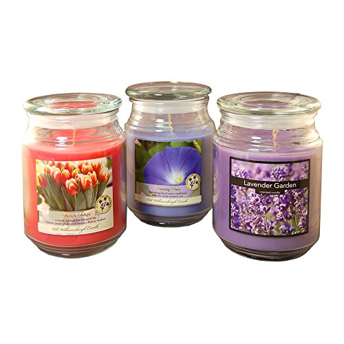 Lumabase 27003 3 Count Floral Collection in Jar Scented Candles, 18 oz, Multicolor