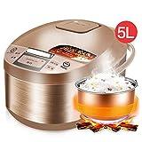YIAIYW Reiskocher-Dampfer-Funktion-Hitzeschutz-Hotmelt-Automatik,Multifunktions-Reiskocher, antihaftbeschichteten Kochtöpfen