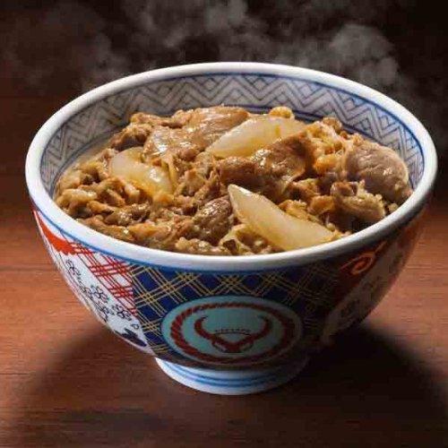 吉野家 冷凍牛丼の具 15食セット
