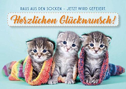 3 Stück Doppelkarte mit Kuvert, Karte, Grußkarte, Geburtstagskarte Katze, drei Kätzchen Raus aus den Socken – jetzt wird gefeiert!