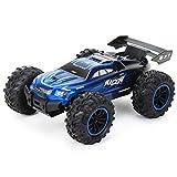 DBXMFZW 1/18 Scale Sports Racing Control Remoto Car 2.4G Deriva de alta velocidad RC Vehículo 4x4 Off-Road RC Coche con resistencia a la caída y resistencia a los choques Regalos recargables para niño