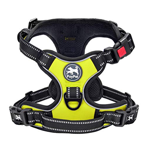 PoyPet Dog Harness