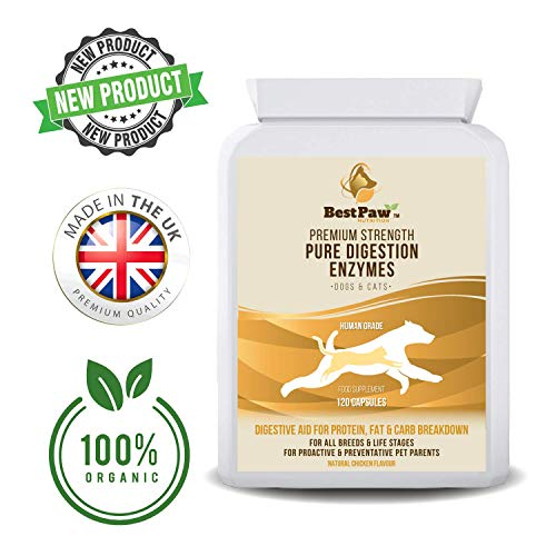 Best Paw Nutrition Verdauungsenzyme für Hunde & Katzen - Hilft bei Verdauungsstörungen und Stuhlverlust bei Hunden