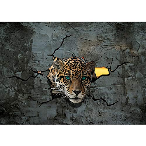 Papel Pintado Fotográfico Premium Plus fotográfico pintado–cuadro de pared–Leopard Ojos piedra Pared Piedras...