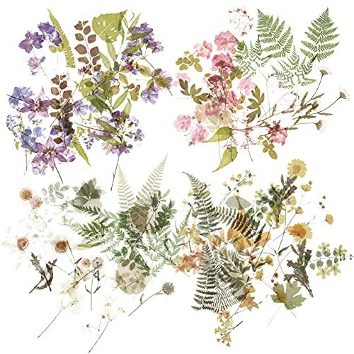 EXCEART 4 Set Scrapbook Autoadesivi del Fiore Estetico Floreale Adesivi Vegetali Naturali per Bambini Stickers Planner Diario Fabbricazione della Carta Adesivi per La Bottiglia di Acqua