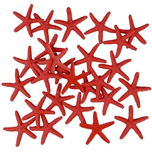 Zhichengbosi 30 Pezzi Stella Marina, 6 cm di Stella Marina per Matrimonio l'arredamento e Progetto Craft (Rosso) (Rosso)