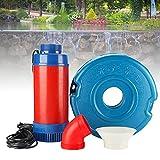 BIWABrave Oxigenador para Estanques, Bombas de Filtración para Bombas, Adecuado para Pequeños Estanques, Arroyos, Cursos de Agua, Cascadas, Fuentes (Size : 30M Wire)