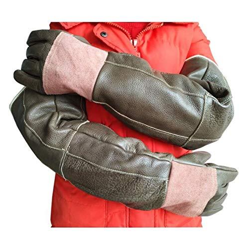 YYQQ Tierhandschuhe Weiches Leder Verdicken Kratzfeste Handschuhe Bissfeste Schutzhandschuhe/Kratzer Gardening Wildtiere Schutzhandschuhe (Color : Braun)