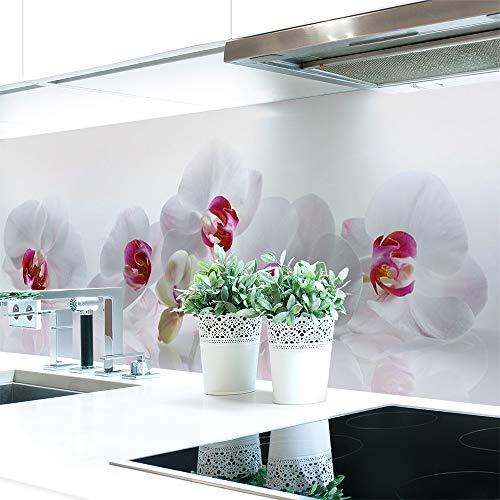 Küchenrückwand Orchidee Premium Hart-PVC 0,4 mm selbstklebend 160x51cm