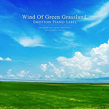 Wind Of Green Grassland