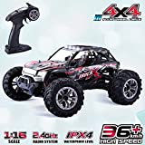 GoStock Remote Control Car, 4WD RC Car 36km/h High Speed Off-Road Monster Truck 1:16 Electric Racing Car...